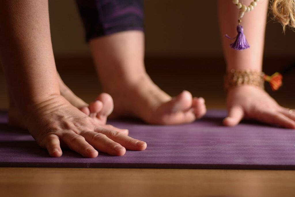 Vinyasa Yoga Purnima Pavia